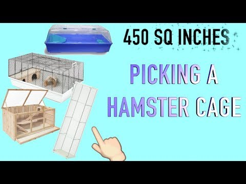 PICKING A HAMSTER CAGE
