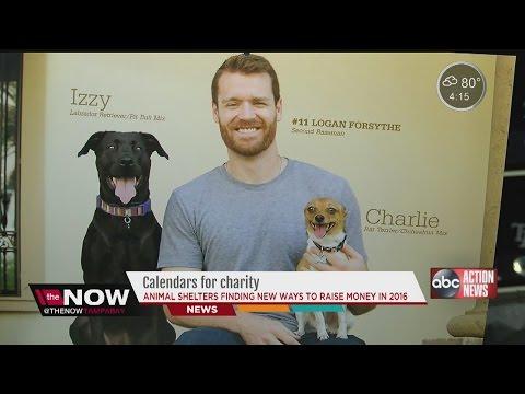 2016 charity calendars raising money for homeless animals in Tampa Bay