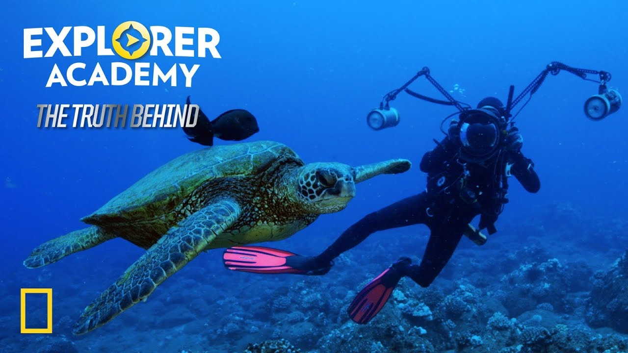 Brian Skerry: Swimming with Giants | Explorer Academy: The Truth Behind