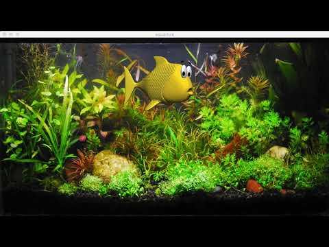 Animated Fish In Aquarium.  Coded In Processing.
