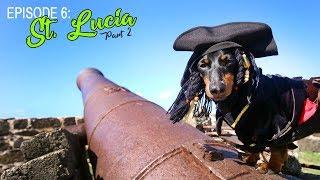 Episode 6: Crusoe's Trip to St Lucia (Part 2) thumbnail