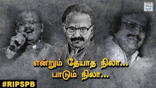 spb-the-legend-who-lives-on-spb-tribute-remembering-spb-hindu-tamil-thisai