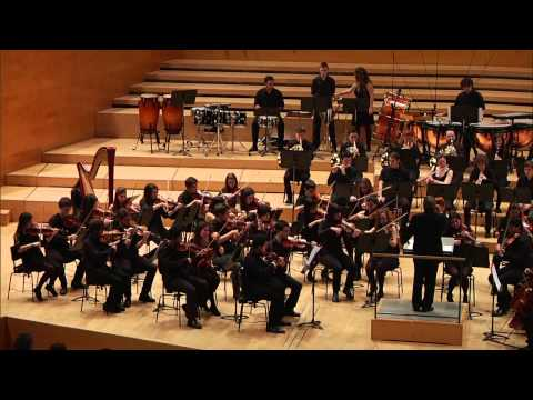 Concert a L'Auditori: Orquestra simfònica - Dissabte 14.12.2013