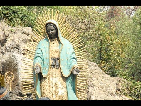 Dr. Rodrigo Martínez Baracs: La Virgen de Guadalupe. Documentos y relatos históricos
