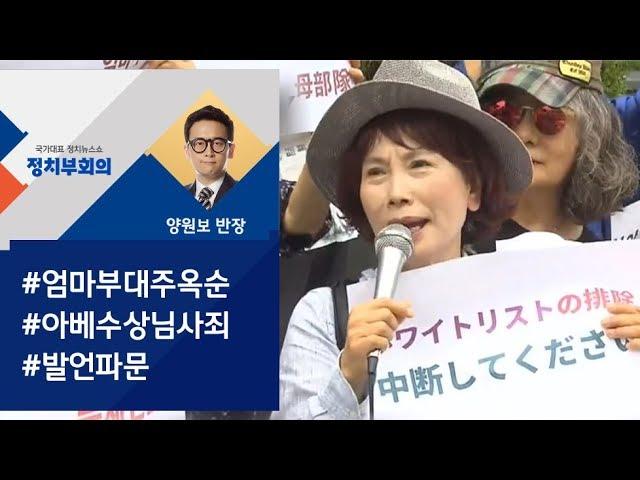 [정치부회의] 아베 수상님, 사죄드립니다 엄마부대 주옥순 발언 파문