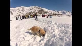 Saras Gressoney winter 2016