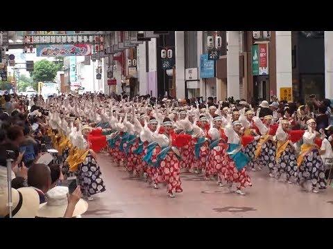 ほにや ~2017高知よさこい祭り・本祭1日目(帯屋町演舞場)