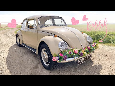 VW Beetle Weddding Car Hire in Hertfordshire