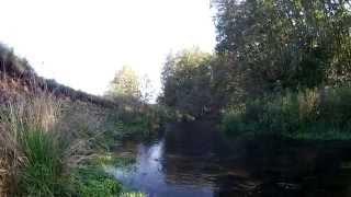 Новая речушка - новые открытия  (видео-отчет) рыбалка сентябрь 2015
