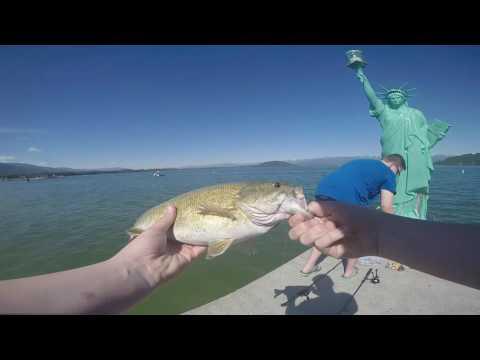 Too Many Bass// Idaho Fishing Trip