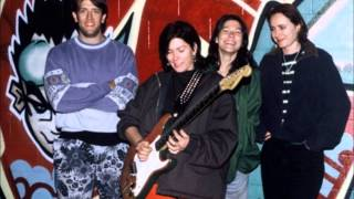 "The Breeders - ""Cannonball Live"" - Live 1993 Silver"