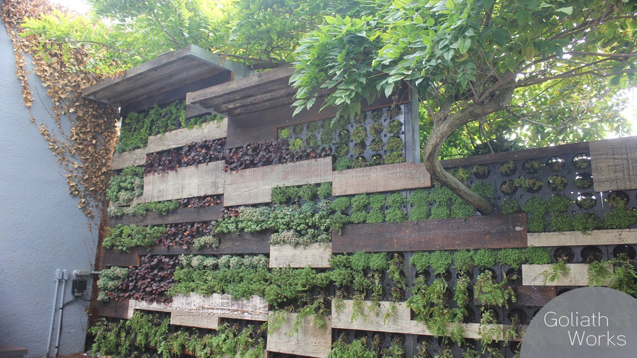 A living wall with wisteria youtube - How to build a living wall ...