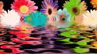 Flipsyde Feat t.A.T.u. - Happy Birthday - instrumental