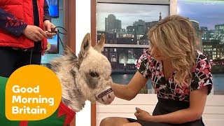 Charlotte Falls in Love With Ottie the Tiny Donkey | Good Morning Britain