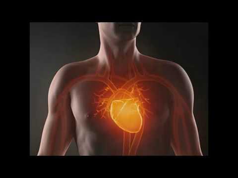 Сердцебиение здорового человека - YouTube