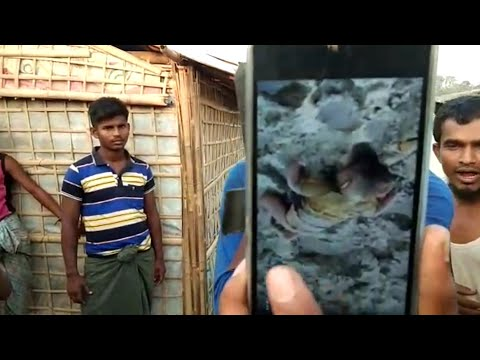 Myanmar government for killing 8 of his family members and other Rohingyas