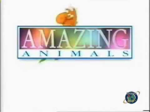 Amazing Animals - Opening & Ending (Discovery Kids) 1996-2000
