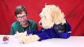 Dog Acts Human! Plus Bloopers! Secret Life Of Pets Mini Pets Mini Figures Blind Bags  # 32