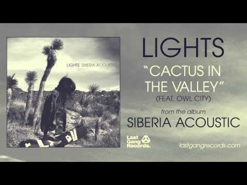 Lights - Cactus In The Valley (Feat. Owl City)