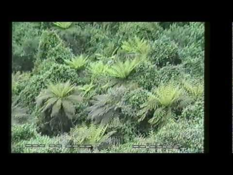 South Pacific 1987 (Part Two Australia and Hawaii).wmv