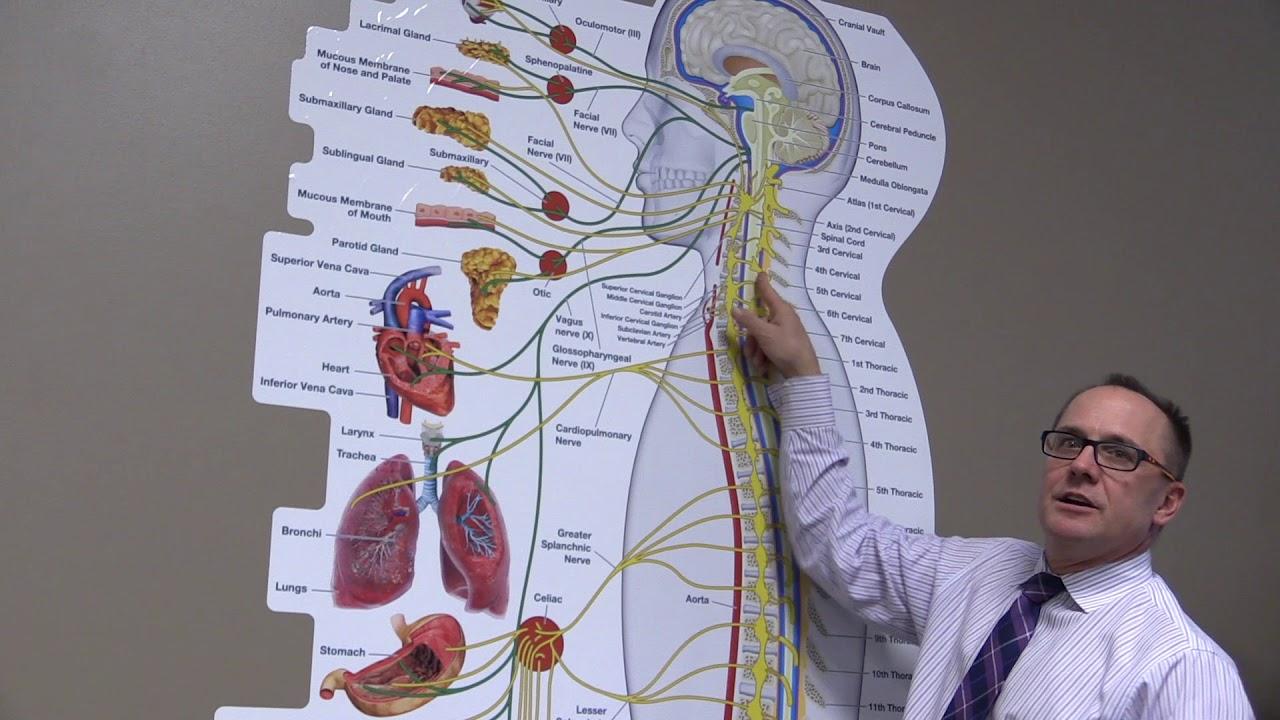 Omaha ne laryngitis sore throat thyroid c5 youtube omaha ne laryngitis sore throat thyroid c5 pooptronica
