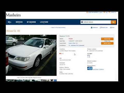 Visiting Various Manheim Auto Auction
