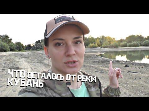 Вопрос: Какие схемы пищевой цепочки реки Кубань?