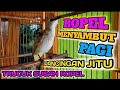 Suara Trucukan Gacor Ropel Menyambut Pagi Pancingan Jitu Trucuk Susah Ropel  Mp3 - Mp4 Download