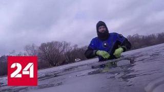 Самые редкие и неожиданные находки: в Москве чистят водоемы