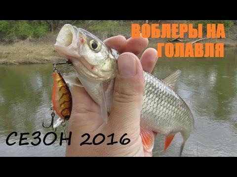 Воблеры на голавля - лучшие и рабочие в сезоне 2016!