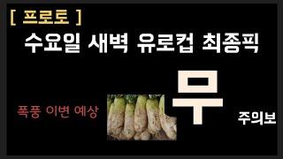 """[프로토] 유로컵 최종픽 """"무 주의보""""  - 스포츠토토…"""
