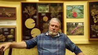 Алексей Оскольский: Такого количества «темной материи» в истории биологии еще не было