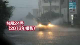 台風24号:本島北部(2013年10月7日)