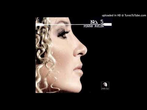 Pınar Aylin-Sebebini Sorma(İnstrumental Karaoke) 2004 indir