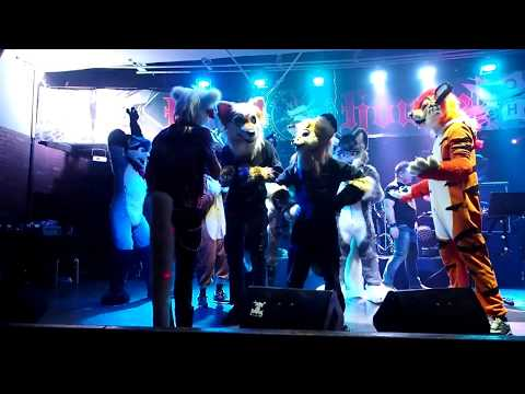 Moscow Furry Night 2017 Uncut