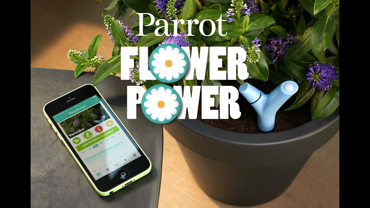 introducing parrot flower power youtube. Black Bedroom Furniture Sets. Home Design Ideas