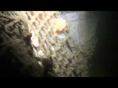 451 Film Duik Noordzee Wrak de Breydon Widgeon 11-06-2011.wmv