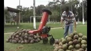 Coconut shredder