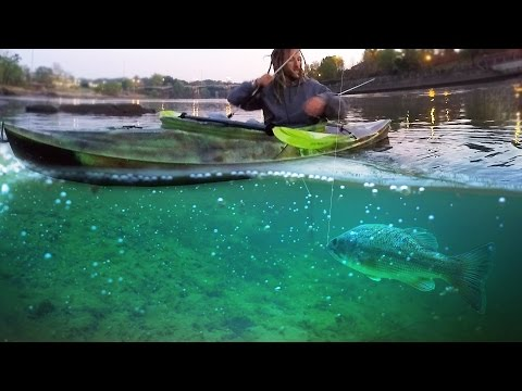 Thumbnail: Top Water Fishing for Giant Bass on the River in a Kayak! - Vlog (Bass Fishing) 16LB Bass!