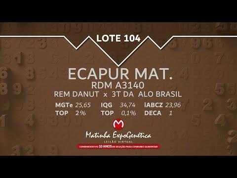 LOTE 104 MATINHA EXPOGENÉTICA 2021