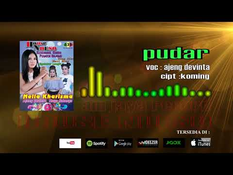 HOUSE NDESO_PUDAR_AJENG DEVINTA(official audio)