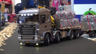 RC Model Truck Scania R600 with Crane and Stone baskets