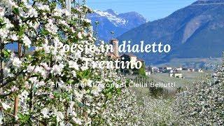 """Poesie in dialetto Trentino - """"el sior e el strazon"""" di Clelia Bellutti"""