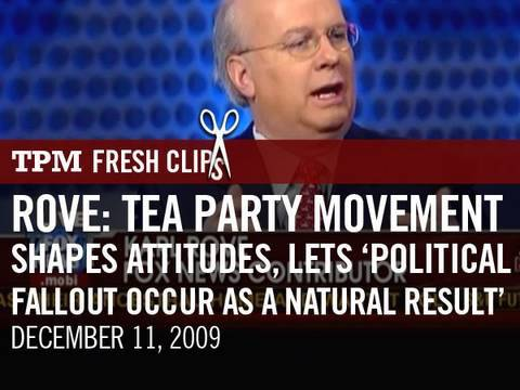 Rove: Tea Party Movement Shapes Attitudes, Lets 'Political Fallout Occur As a Natural Result'