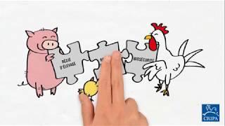 Prévenir vaut mieux que guérir:  Astuces des éleveurs pour éviter les antibiotiques… (5 de 6)