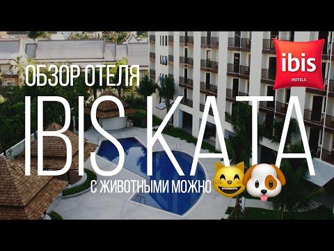 Обзор отеля Ибис Ката (Ibis Kata Phuket) Можно с животными. Дети бесплатно.