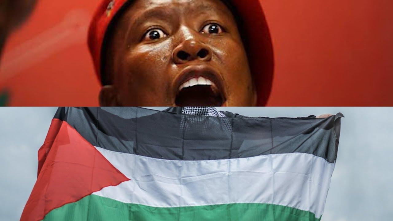 Julius Malema's Bold Speech on a Free Palestine