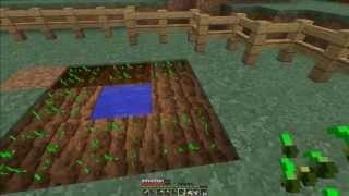 Minecraft Lets Play | Ep 5 - gradinata??