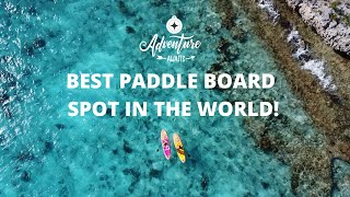 Adventure awaits with Silver Shark Paddle Boards