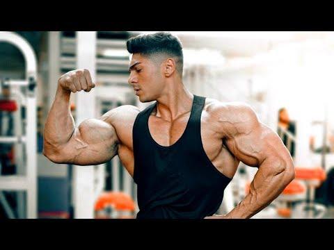 Andrei Deiu - Aesthetic Fitness Motivation